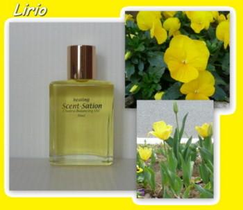 Yellow1_2