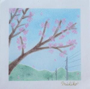 Sakuratree1